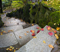 Garden Path Granite Stone Steps Royalty Free Stock Photos