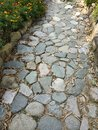 Garden Path lined with stones pebbles rocks and dried leaves pure nature marigold flowers yellow flower green plants sidewalk walk Royalty Free Stock Photo