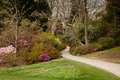 Garden path between shrubbery of azaleas Stock Photography