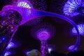 Garden Rhapsody Light Show at Super Tree Grove Royalty Free Stock Photo