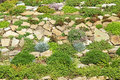 Garden rockery with plants in autumn Stock Photo