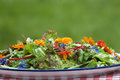 Garden salad with eatable flowers summer Royalty Free Stock Photo