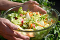 Garden salad person holding bowl of fresh Royalty Free Stock Photography