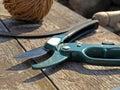 Garden scissor Royalty Free Stock Image