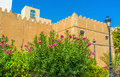 The garden in sfax medival fortification of surrounded by lush gardens with many colorful flowers tunisia Stock Photos