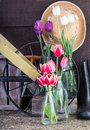 Garden shed with tools and flowers Royalty Free Stock Photo