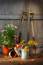Garden shed with tools and pots Royalty Free Stock Photo