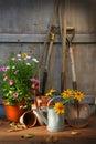 Zahrada kůlna nástroje a hrnce