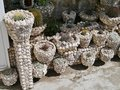 A garden of shells with cactus plants Royalty Free Stock Photo