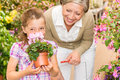 Garden shop child with grandmother smell cyclamen Royalty Free Stock Photos