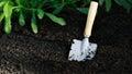 Garden small shovel in vegetable garden a Stock Images