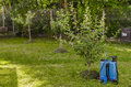Garden sprayer Royalty Free Stock Photo