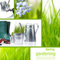 Garden and spring Royalty Free Stock Images