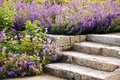 Garden stairs Royalty Free Stock Photos