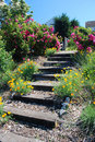 Garden Steps Royalty Free Stock Photos