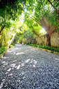 Garden stone path with grass Stock Images