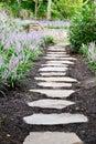 Garden Stone Path and Liriope Royalty Free Stock Photo