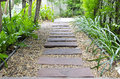Garden stone path in tropical zone Royalty Free Stock Image