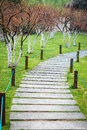 Garden stone path winding in the park Stock Image