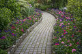 Garden stone pathway Royalty Free Stock Photo