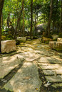 Garden stone walking path Royalty Free Stock Photo