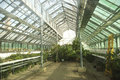 Garden store greenhouse interior of a large with plants Royalty Free Stock Photos