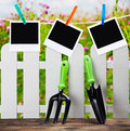 Garden tools and photoframes on a clothespin background of flower fields Royalty Free Stock Photo