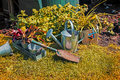 Garden tools still life of and plants Stock Photos