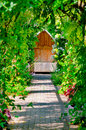 Garden trellis walkway hideout hidden tranquil sitting bench area outdoors empty shaded by vine and roses Royalty Free Stock Photo