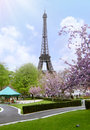 The garden of the Trocadero with the Eiffel Tower in Paris in Fr Royalty Free Stock Photo