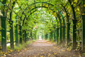 Garden tunnel Royalty Free Stock Image