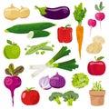 Garden vegetables cartoon vector set