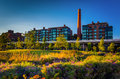 Garden and view of the smokestack in georgetown washington dc Stock Images