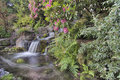 Garden Waterfall in Spring Royalty Free Stock Photo