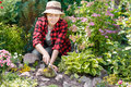 Gardener care of flowers in the garden