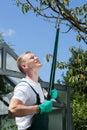 Gardener cropping branch Royalty Free Stock Photo