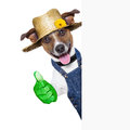Gardener dog happy with thumb up behind a placard Royalty Free Stock Photo