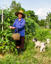 Gardener life gadener pic up cow pea with her dog around Royalty Free Stock Photo