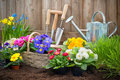 Gardener planting flowers gardeners hands in pot with dirt or soil at back yard Stock Photos