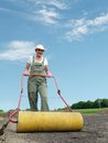 Gardener and roller female leveling soil surface using garden Stock Photos