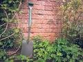 Gardener spade and stuff Stock Image