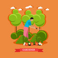 Gardener trimming bush, vector illustration
