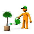 Gardener Watering Palm Stock Photography