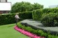 Gardener works in a garden Royalty Free Stock Photo