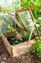 Gardeners cold frame in the garden used to protect seedlings from frost during winter Stock Photo
