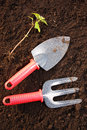 Gardening background Royalty Free Stock Photo