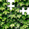 Gardening concept and green landscaping design icon with lush plant foliage leaves background on a jigsaw puzzle with pieces Stock Photo