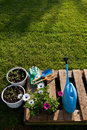 Gardening concept tools and flowers on a diy pot made of wooden pallet Stock Image