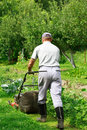 Gardening - cutting the grass Stock Photos
