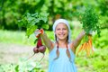 Gardening girl vegetable garden little gardener with bunch of organic carrots and beets Stock Images